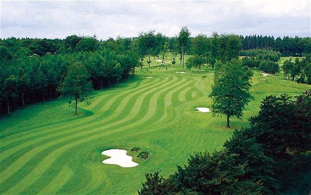 Forest_Pines_golf__1962254b