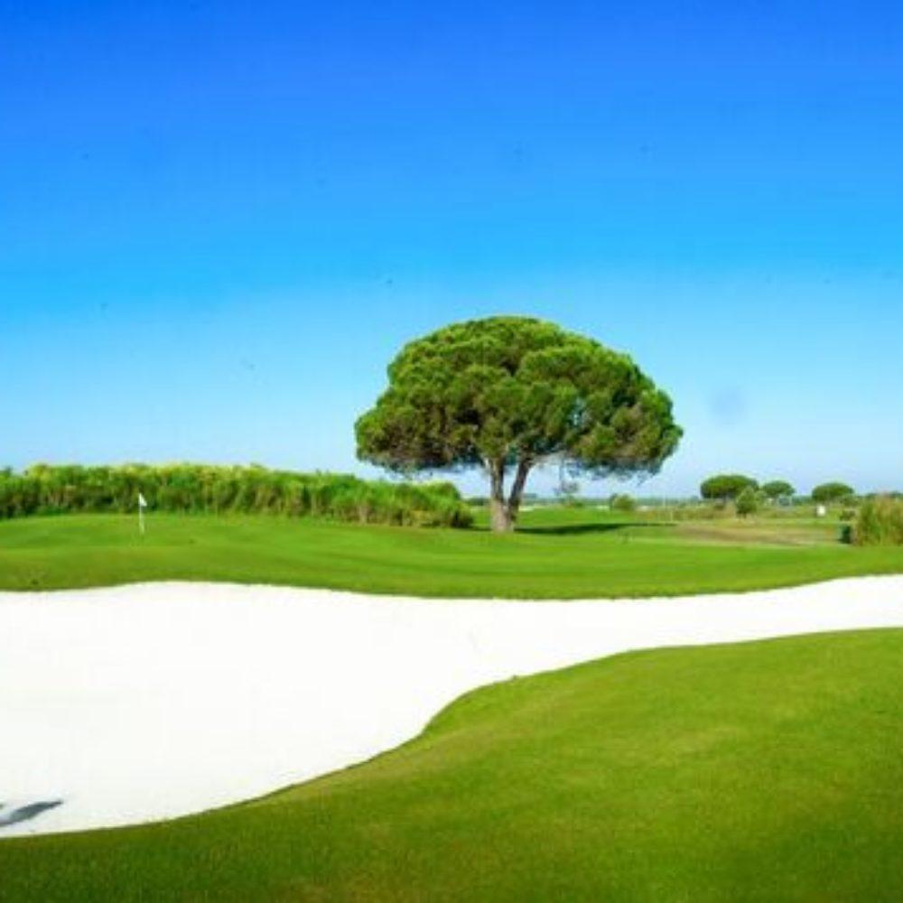 Golf La Estancia (5)